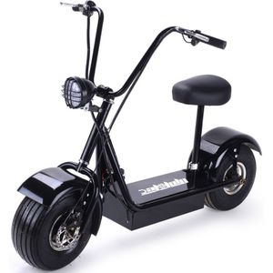 Electric Scooter with Big Wheels