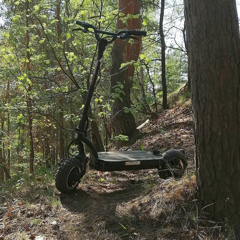 Dualtron Ultra on Forest Trail